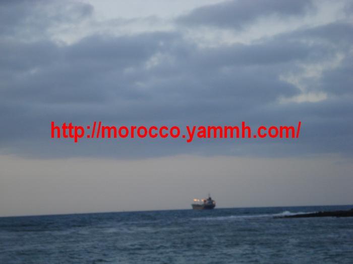 http://www.qassimy.com/up/users/amina/DSC00321.jpg