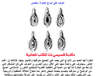 صور انواع الكس http://7artna.gid3an.com/t9533-topic