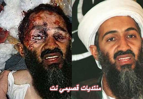 Osama Bin Laden THINGS TO. Osama Bin laden Picture is
